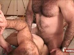 Muscle bears barebacking